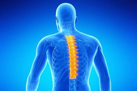 Хондроз грудного отдела позвоночника: симптомы, лечение ...